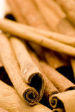 Cinnamon sticks. Studio shot, close up Stock Photos