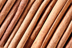 Cinnamon sticks. Royalty Free Stock Images
