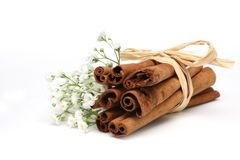 Cinnamon Sticks. Bundle of Cinnamon Sticks with baby's breath isolated on white, No clippong path Stock Photos