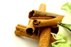 Cinnamon Sticks. Some cinnamon sticks Stock Image
