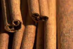 Cinnamon sticks. Macro stock image