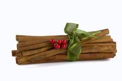 Cinnamon sticks alpha. Bundle of cinnamon sticks tied with a ribbon royalty free stock image