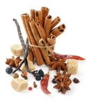 Cinnamon Sticks And Spices Stock Images
