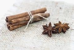 Cinnamon sticks and anice Royalty Free Stock Photo