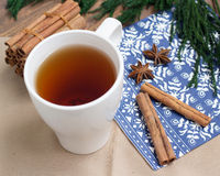 Cinnamon sticks and anice. Winter background Royalty Free Stock Photos