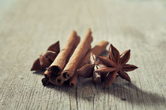 Cinnamon sticks with anis Stock Image