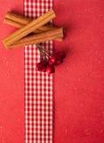 Cinnamon sticks with berries Stock Image