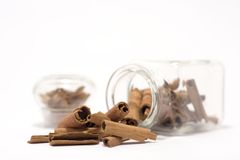 Cinnamon sticks in bottle. Isolated on white Royalty Free Stock Photo