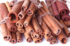 Cinnamon sticks in a bunch Stock Photography