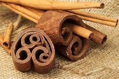 Cinnamon sticks on burlap Stock Image