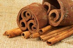 Cinnamon sticks on burlap Royalty Free Stock Images
