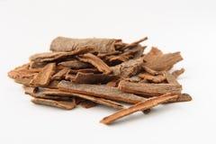 Cinnamon Sticks Chopped Royalty Free Stock Photography