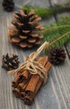 Cinnamon sticks Stock Photography