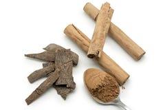 Cinnamon sticks and cinnamon powder  on white Stock Photo