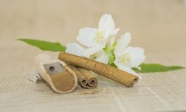 Cinnamon and white fragrant flower. Cinnamon sticks, cinnamon powder in a wooden spoon and white scented flower on a wooden base Stock Images