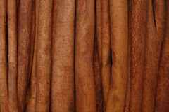 Cinnamon sticks. Close up image of brown cinnamon sticks Stock Images