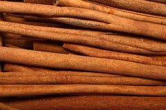 Cinnamon sticks. Close up image of brown cinnamon sticks Stock Photography