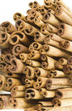 Cinnamon sticks close up. In a white background Royalty Free Stock Photography