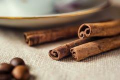 Cinnamon sticks closeup Stock Image