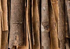 Cinnamon sticks. Closeup of cinnamon sticks. View from above Royalty Free Stock Photos