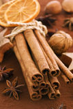 Cinnamon Sticks with Cocoa Royalty Free Stock Photo