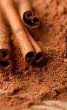 Cinnamon Sticks with Cocoa Stock Photos