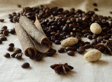 Cinnamon sticks,coffee beans,anise and almond candies still life Royalty Free Stock Photo