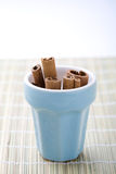 Cinnamon sticks in a cup. Stock Image