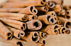 Cinnamon sticks in cup. Royalty Free Stock Image
