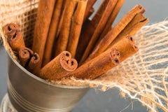 Cinnamon sticks Royalty Free Stock Photo