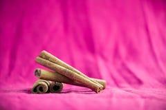 Cinnamon sticks on fuchsia canvas background. A pile of cinnamon sticks on fuchsia canvas background Stock Photos
