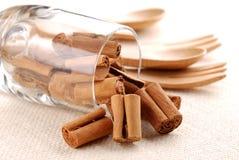 Cinnamon sticks in a glass beaker Royalty Free Stock Photos