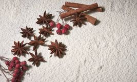 Cinnamon sticks, hazelnuts, star anise stars, red rowan berries royalty free stock images