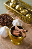 Cinnamon sticks and indian spices with traditional setup decorat Stock Photography