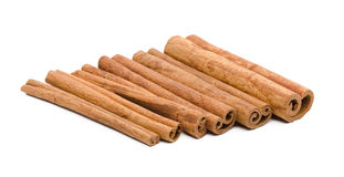 Cinnamon sticks  isolated on white background Stock Image
