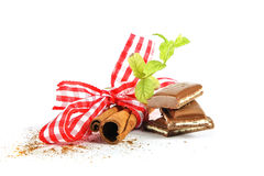 Cinnamon sticks and mint 2 Stock Images