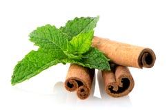 Cinnamon sticks and mint leaves Stock Photo