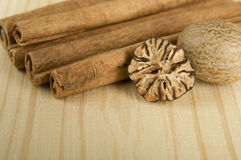 Cinnamon sticks and nutmeg Stock Images