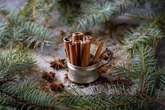 Cinnamon sticks in old cup and star anise spice Royalty Free Stock Image