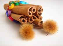 Cinnamon sticks & Plane tree seeds Stock Image