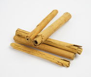 Cinnamon sticks or quills on white background Stock Photography