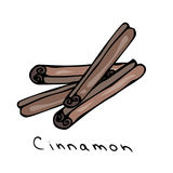 Cinnamon Sticks. Realistic Hand Drawn Doodle Style Sketch. Vector Illustration Isolated On a White Background. Royalty Free Stock Images