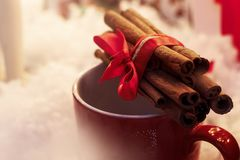 Cinnamon sticks with ribbon on red cup. winter cozy moment. spac Royalty Free Stock Photo