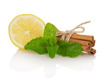 Cinnamon sticks, segment of lemon and mint Stock Photos
