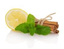 Cinnamon sticks, segment of lemon and mint Stock Photos