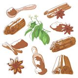 Cinnamon sticks set. Aromatic spice, dried bark of tropical trees, sweet brown powder for flavouring food. Vector flat style cartoon illustration isolated on Royalty Free Stock Images