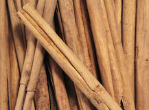 Cinnamon sticks. Some Ceylon cinnamon sticks (the background Royalty Free Stock Images