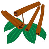 Cinnamon. Sticks spice icon isolated Stock Photo