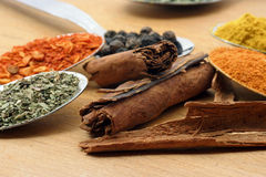 Cinnamon sticks and spices stock photography