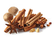 Cinnamon sticks and spices Royalty Free Stock Images